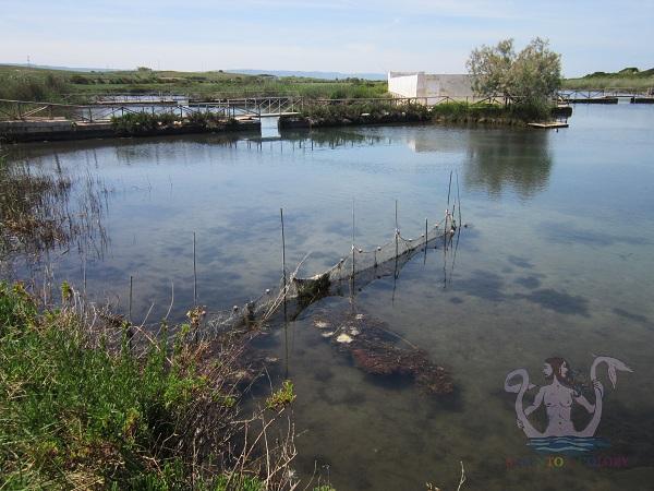 fiume morelli ostuni