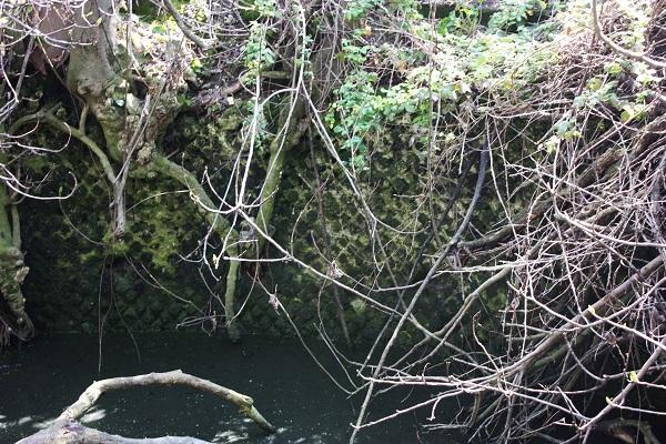gora, vie dell'acqua nel salento