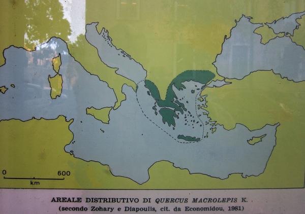 carta delle vallonee