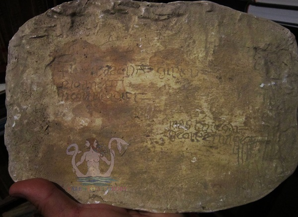 iscrizioni