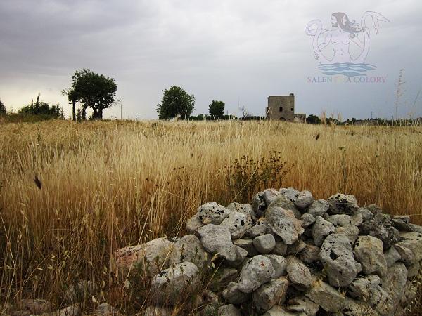 storia nelle campagne