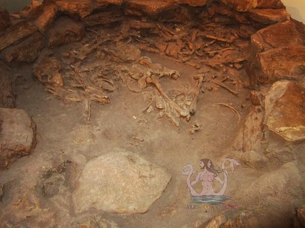 circoli funerari di serra cicora