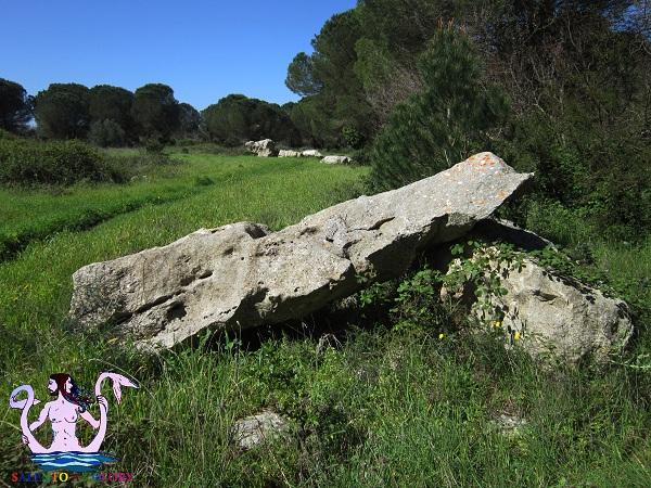 maglie megalitica