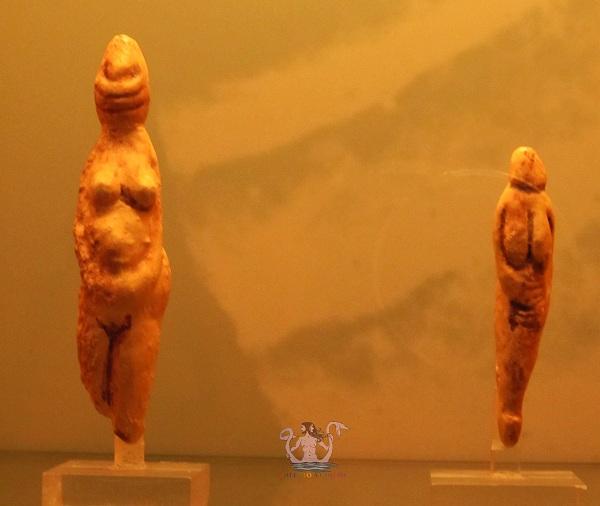 Museo Civico di Paleontologia e Paletnologia di Maglie