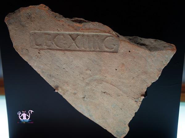 museo papirologico 10