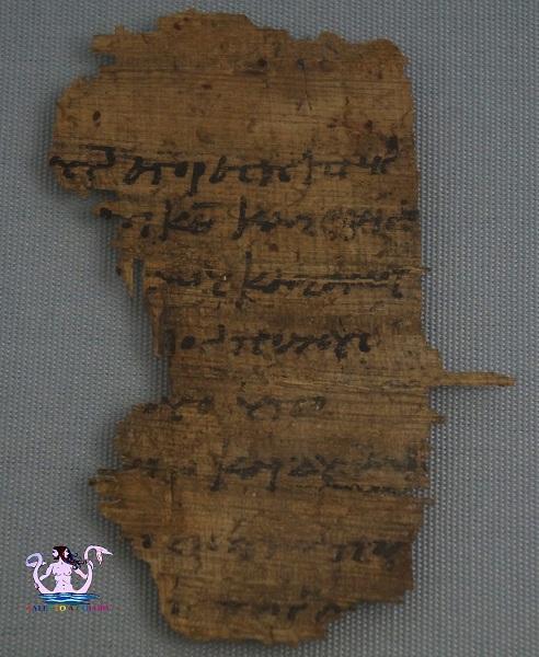 museo papirologico 28
