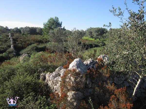 villaggio rupestre di acaya