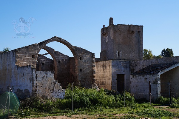 Masserie storiche d'Arneo, masseria termite