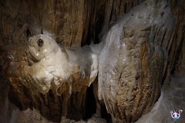 grotta zinzulusa 20