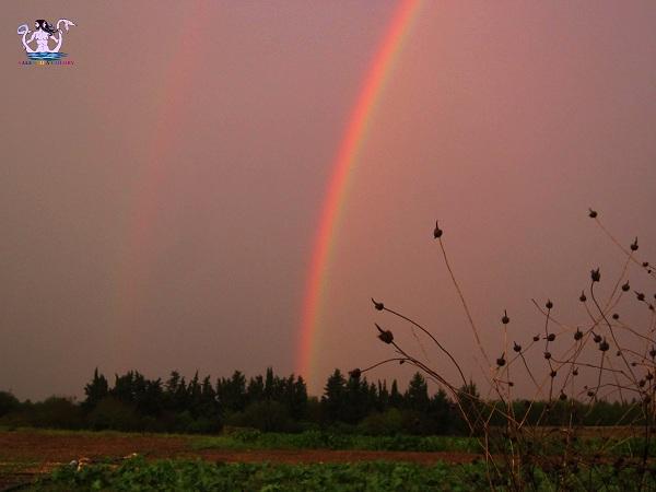 alba tramonti e arcobaleni in salento 9