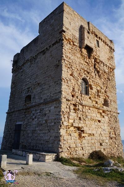torre palane 9