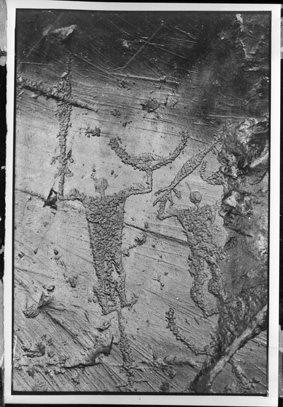 Dos Cùi, Riserva naturale incisioni rupestri di Ceto, Cimbergo e Paspardo - 1980