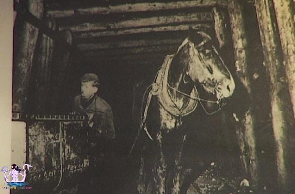 Lucio Parrotto storia di un minatore 12