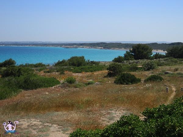 Parco naturale regionale Isola di Sant'Andrea e litorale di Punta Pizzo 5