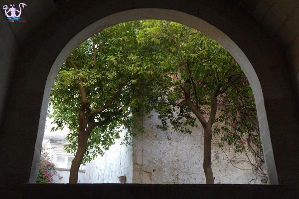 cortili aperti palazzo guarini 5