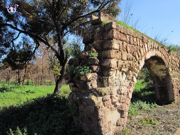 acquedotto del triglio 8