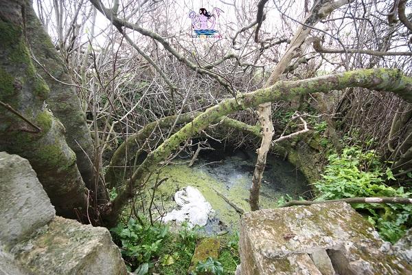 acquedotto romano di brindisi pozzo di vito 2