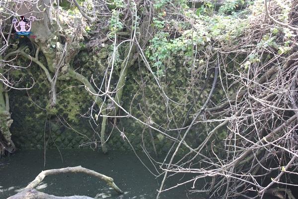 acquedotto romano di brindisi pozzo di vito 3