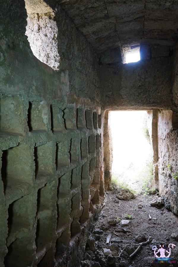 Lungo le strade dell'antica economia salentina