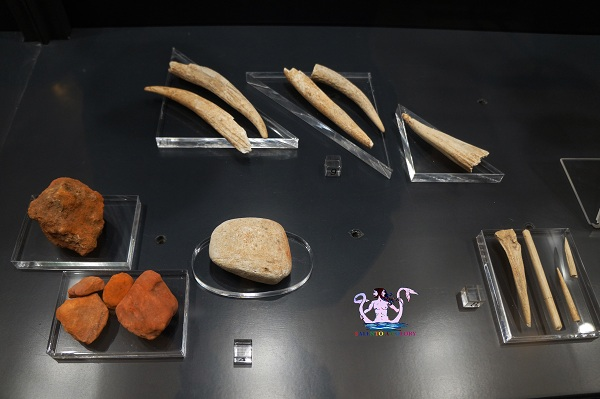 museo archeologico di castro 13
