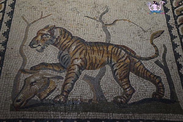 museo archeologico di taranto 20