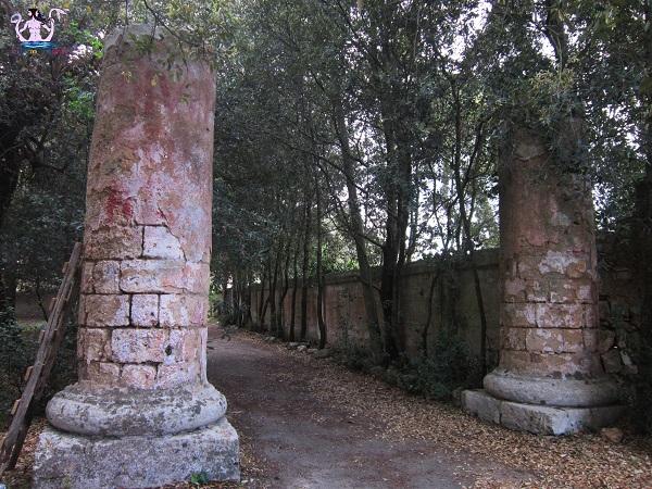 trepuzzi-16
