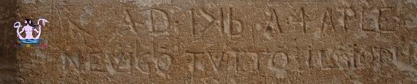 graffito-minervino