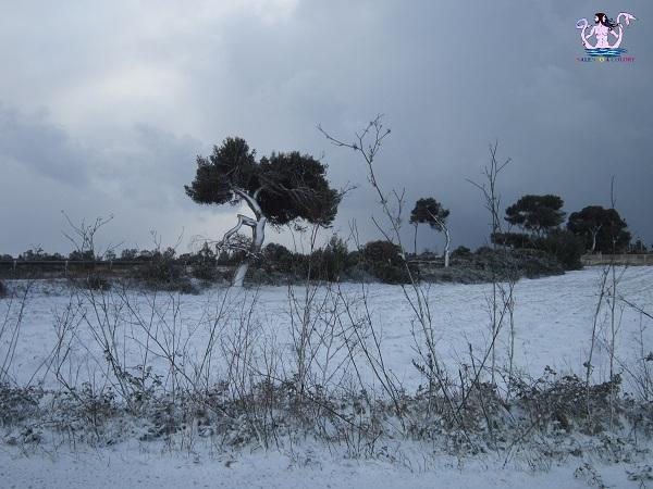 neve-sul-salento-5