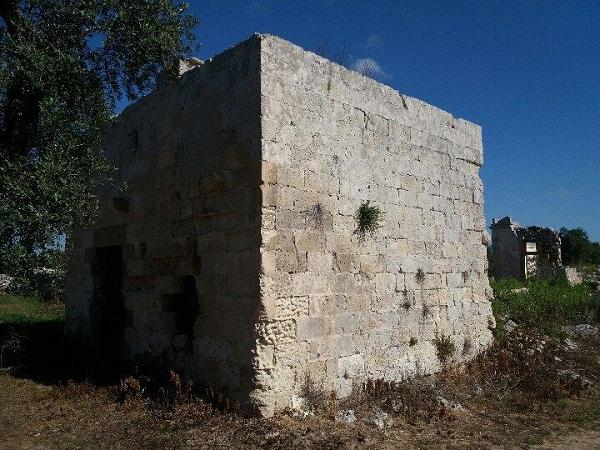 I Graffiti del casale medievale di Ficole