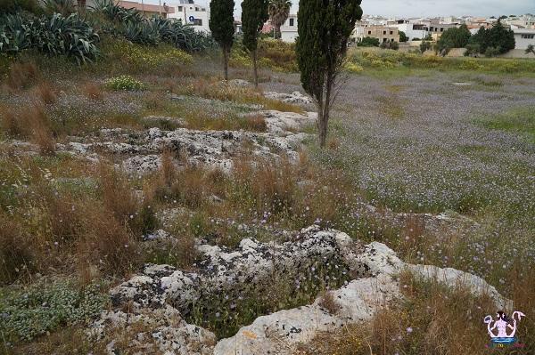 La necropoli medievale di Casarano