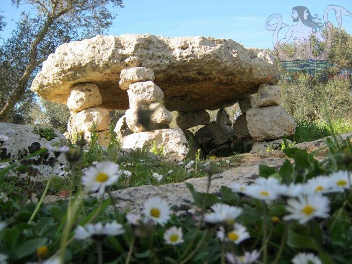 minervino-dolmen-tra-margherite1