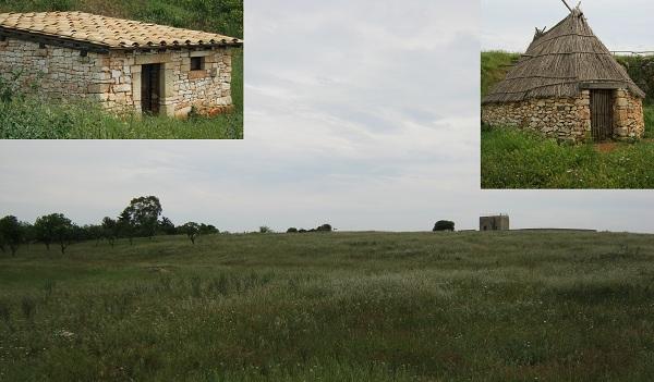 castello d'alceste a san vito dei normanni2