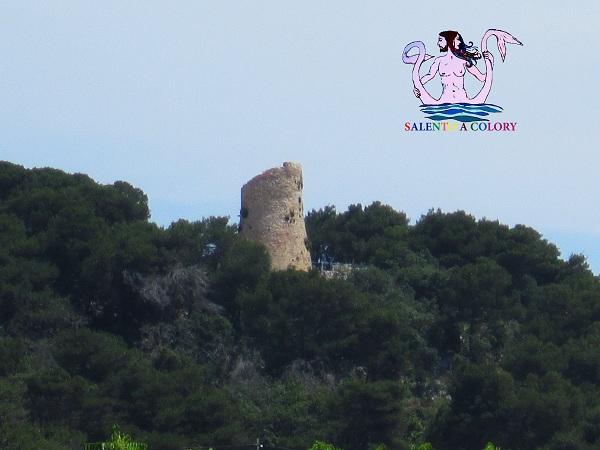 12 torre santa cesarea