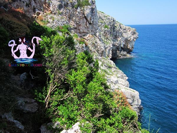sentiero delle grotte cipolliane