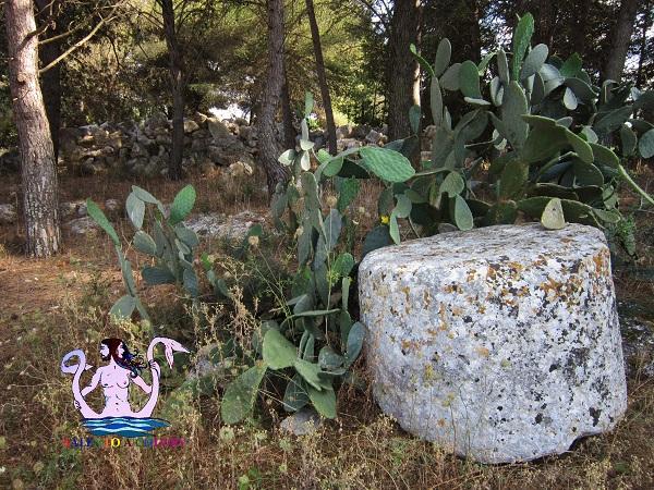 pietra misteriosa