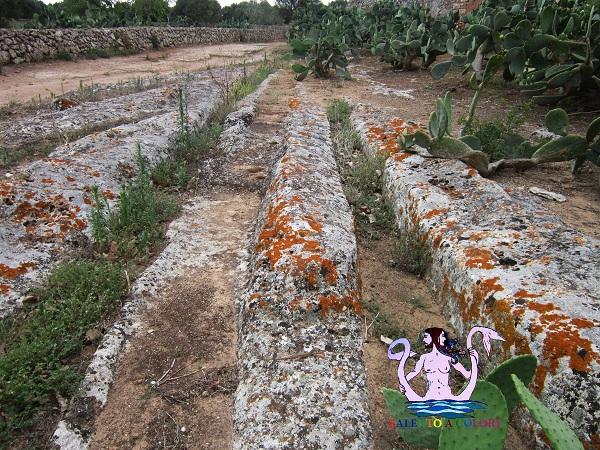 antiche strade presso masseria giampaolo
