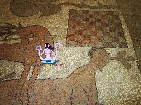 scacchera e centauro