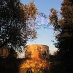 Nel bosco della Torre del Moretto