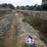 Tracce del passato fra Carpignano e Torcito