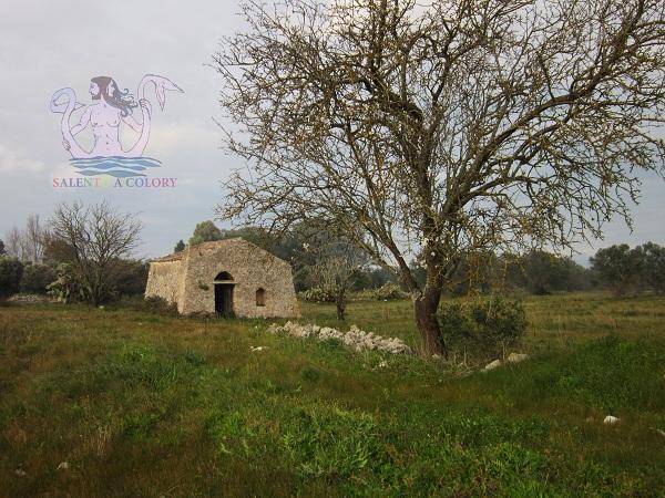 casa rurale carpignano