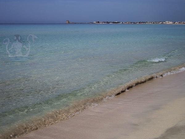 torre lapillo spiagge del salento
