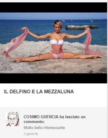 Il Delfino e la Mezzaluna