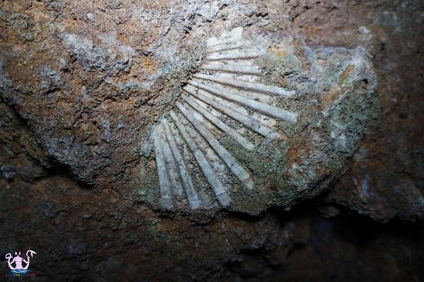 grotta grava palombara 11
