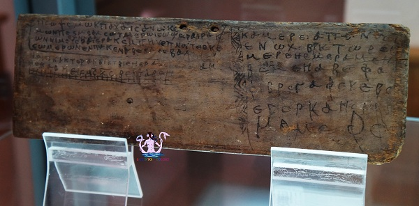 museo papirologico 14