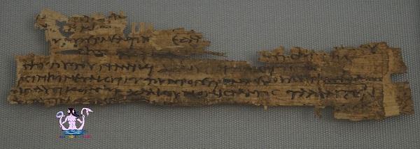 museo papirologico 26