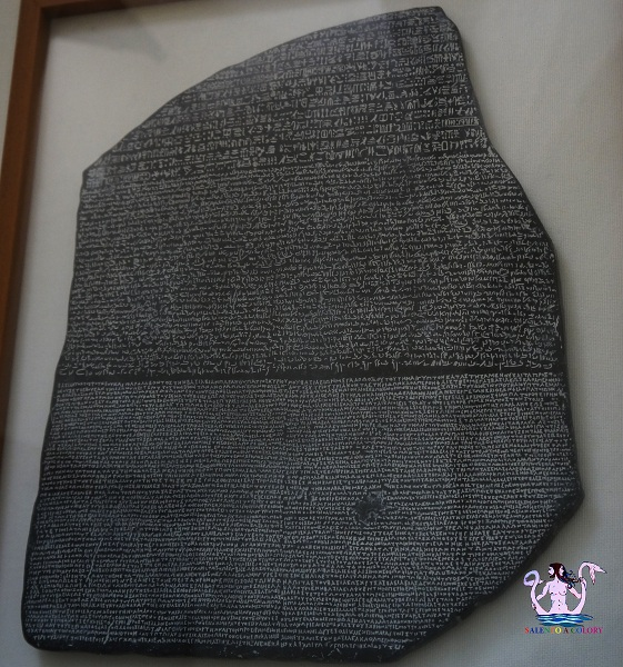 museo papirologico 3 bis