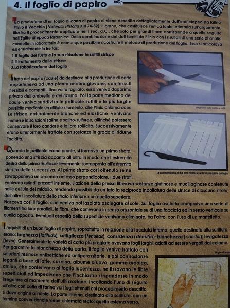 museo papirologico 30