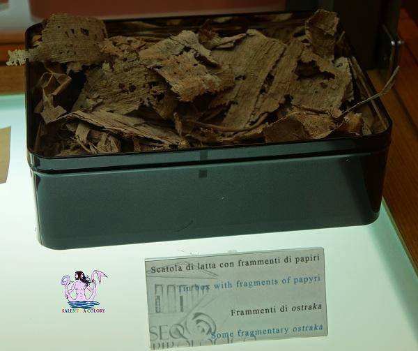 museo papirologico 53