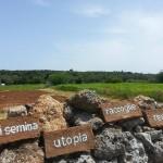 Chi semina utopia raccoglie realtà: un sogno mediterraneo