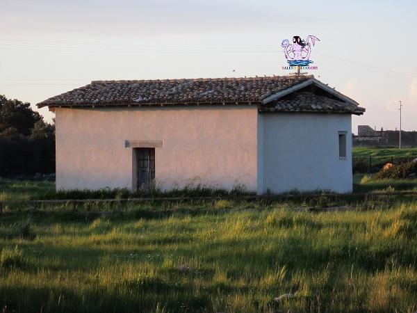villaggio medievale di apigliano 4